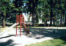Picture Of The Park
